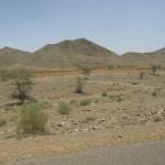 132-desert