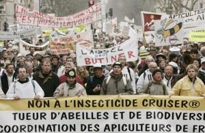 Les apiculteurs boycottent la pollinisation du colza