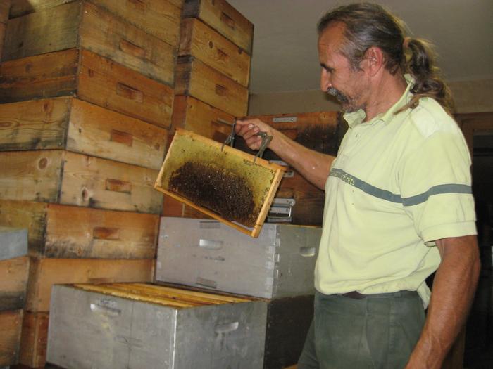 un blog pour les abeilles extraction miel. Black Bedroom Furniture Sets. Home Design Ideas