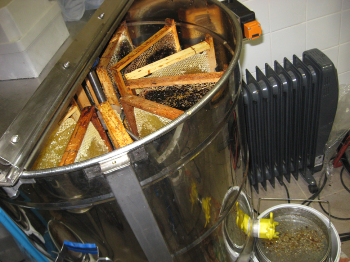 un blog pour les abeilles extracteur 2. Black Bedroom Furniture Sets. Home Design Ideas