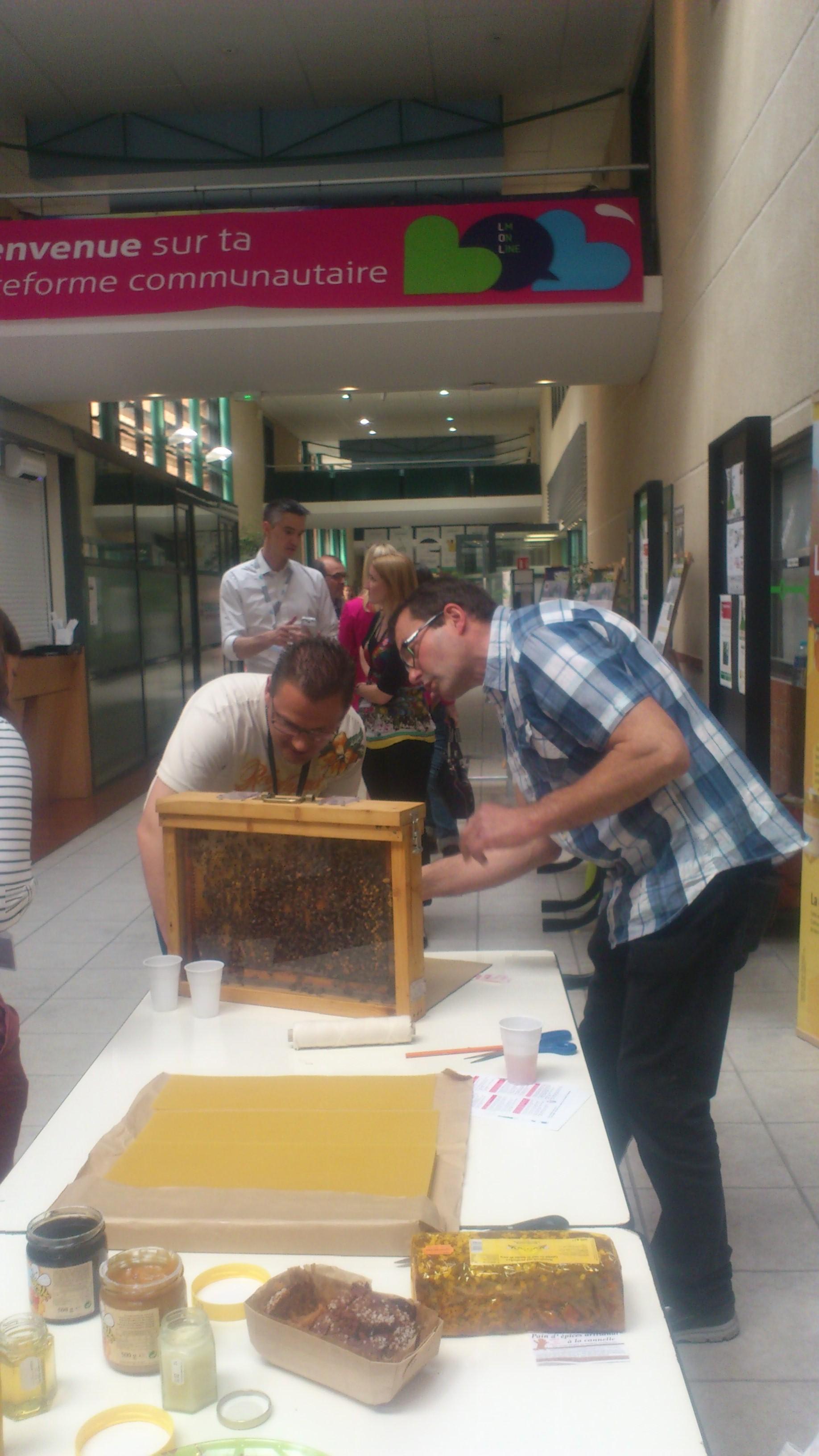 un blog pour les abeilles un toit pour les abeilles abeilles miel. Black Bedroom Furniture Sets. Home Design Ideas