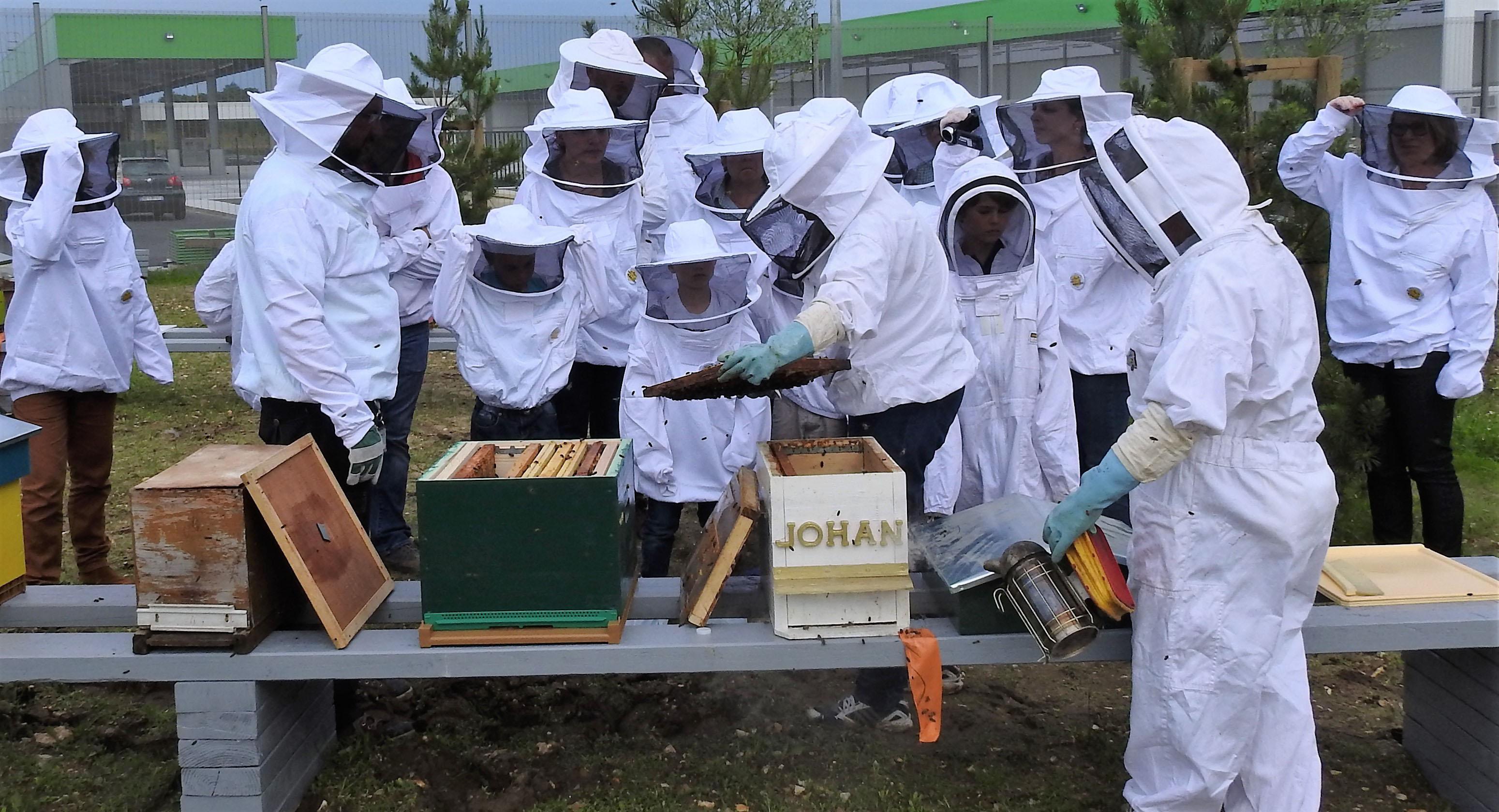 un blog pour les abeilles dscn2652. Black Bedroom Furniture Sets. Home Design Ideas