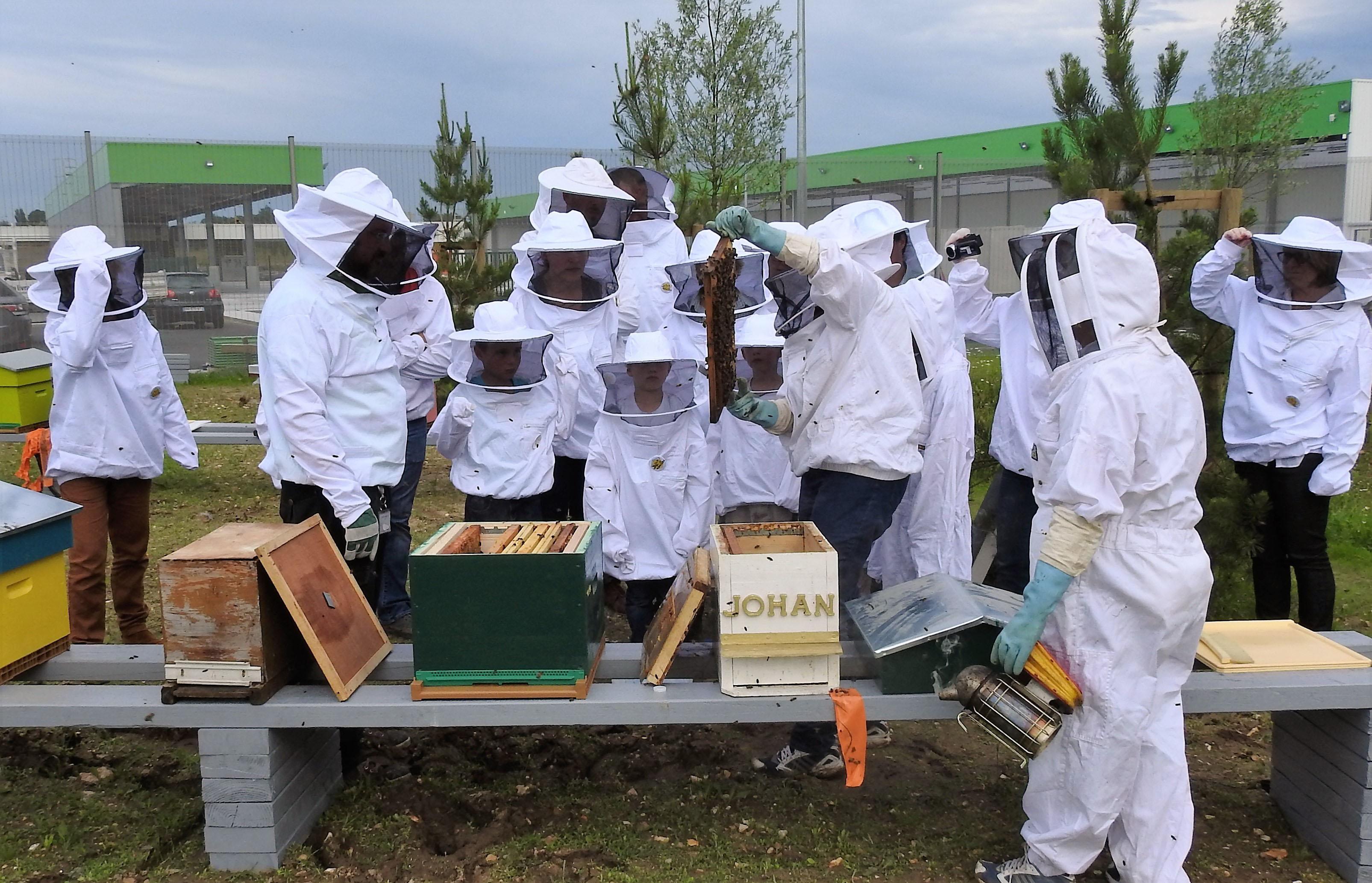 un blog pour les abeilles dscn2653. Black Bedroom Furniture Sets. Home Design Ideas