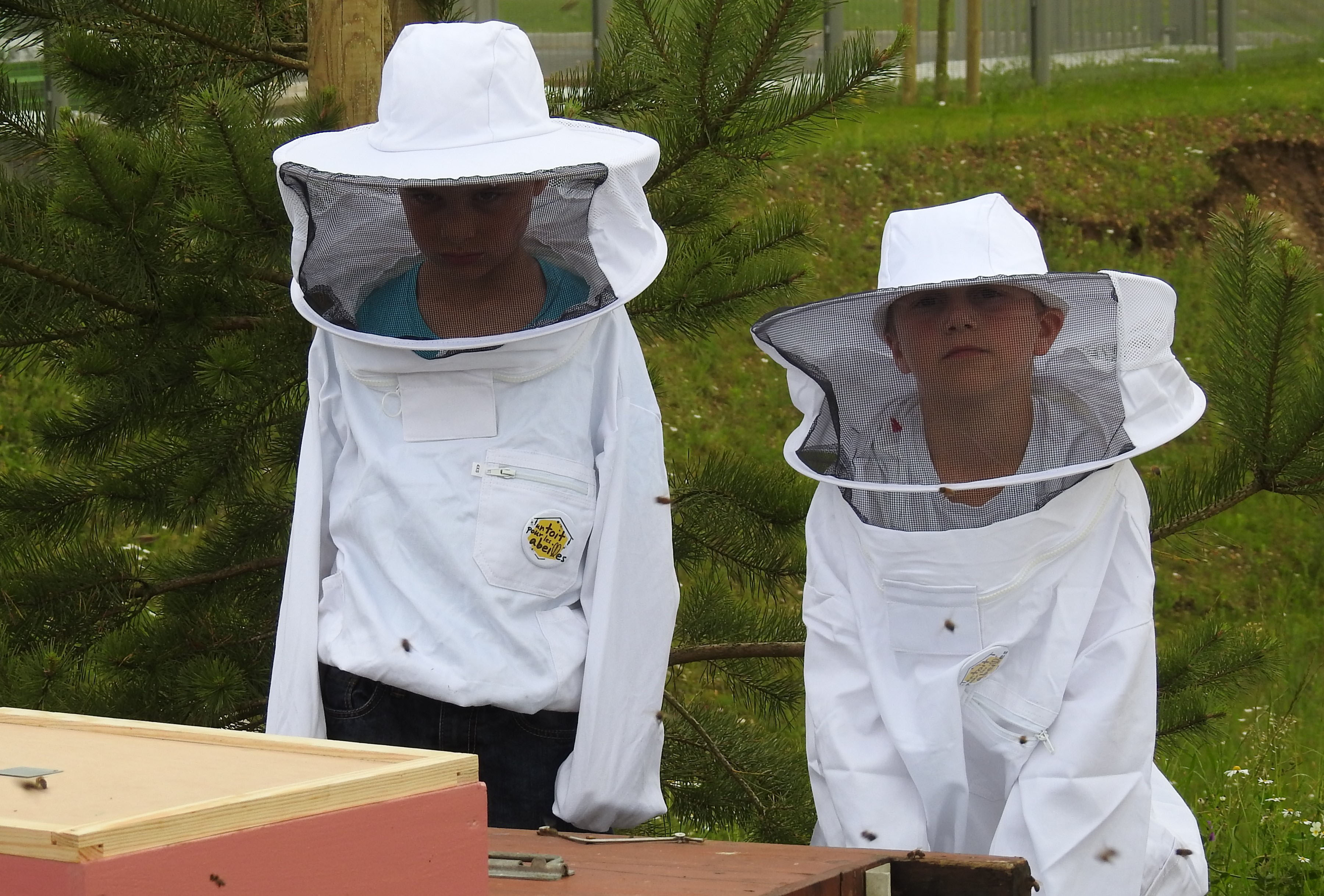 un blog pour les abeilles dscn2696. Black Bedroom Furniture Sets. Home Design Ideas