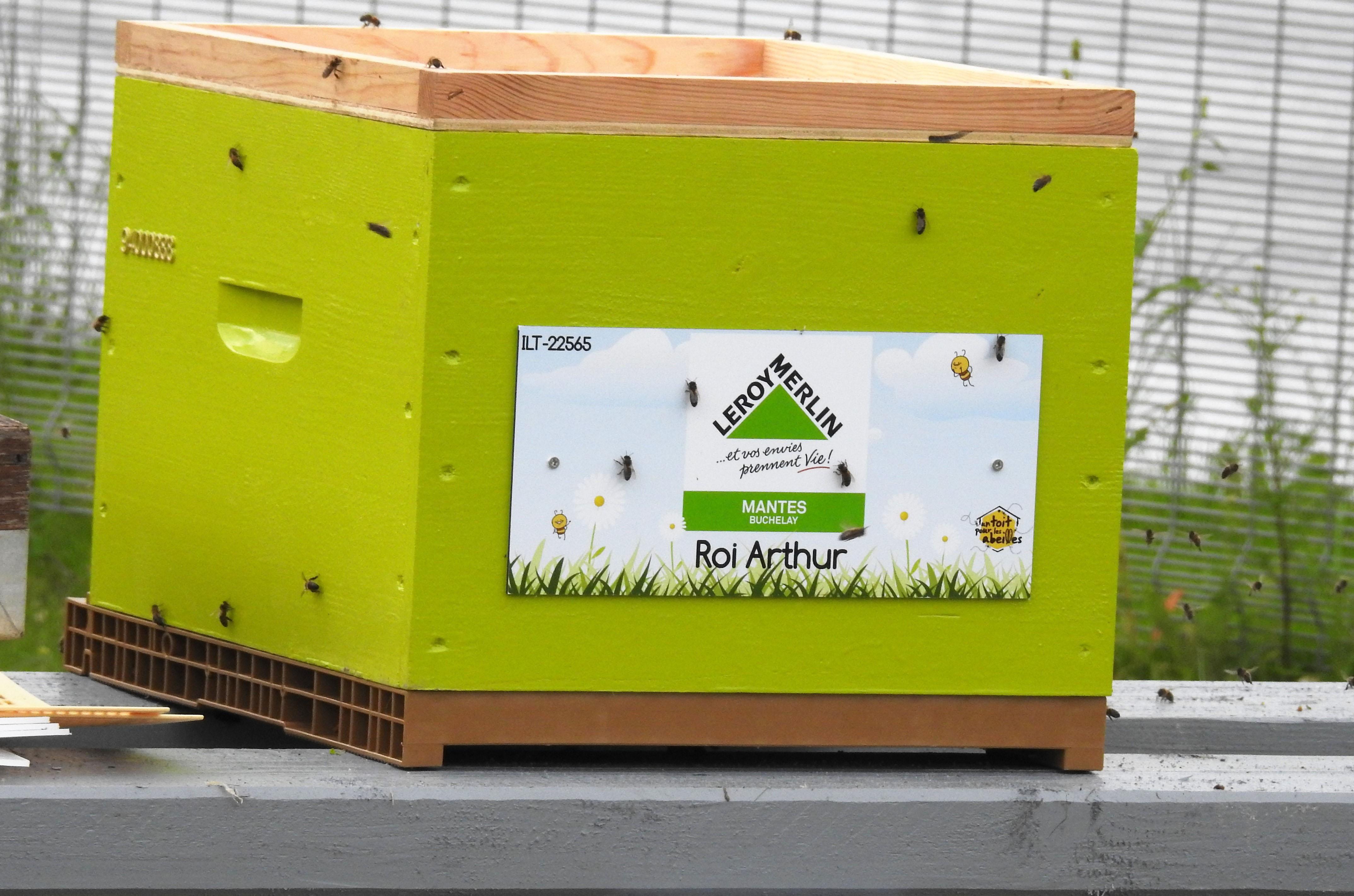 un blog pour les abeilles dscn2731. Black Bedroom Furniture Sets. Home Design Ideas