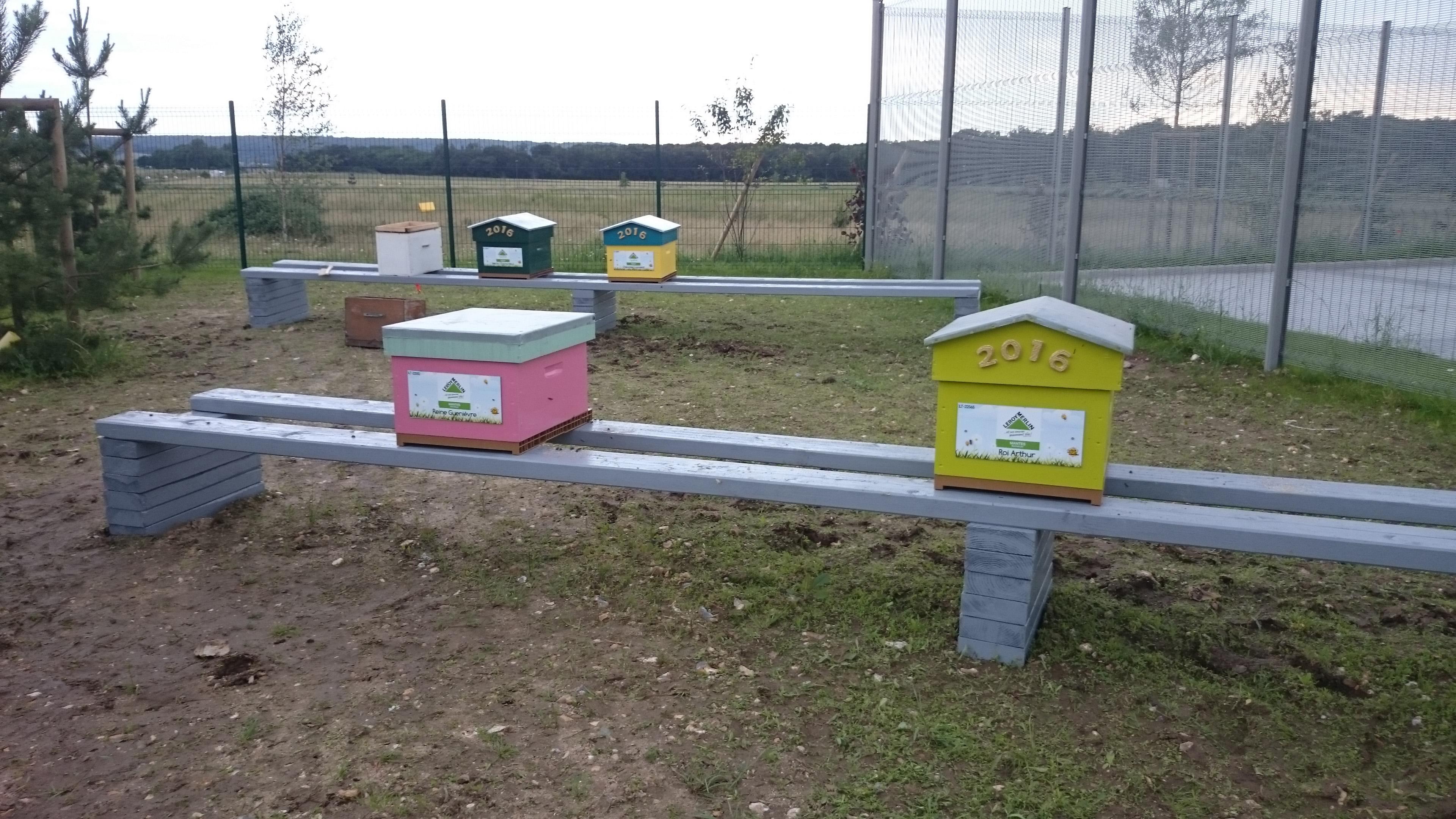 un blog pour les abeilles dsc 0298. Black Bedroom Furniture Sets. Home Design Ideas