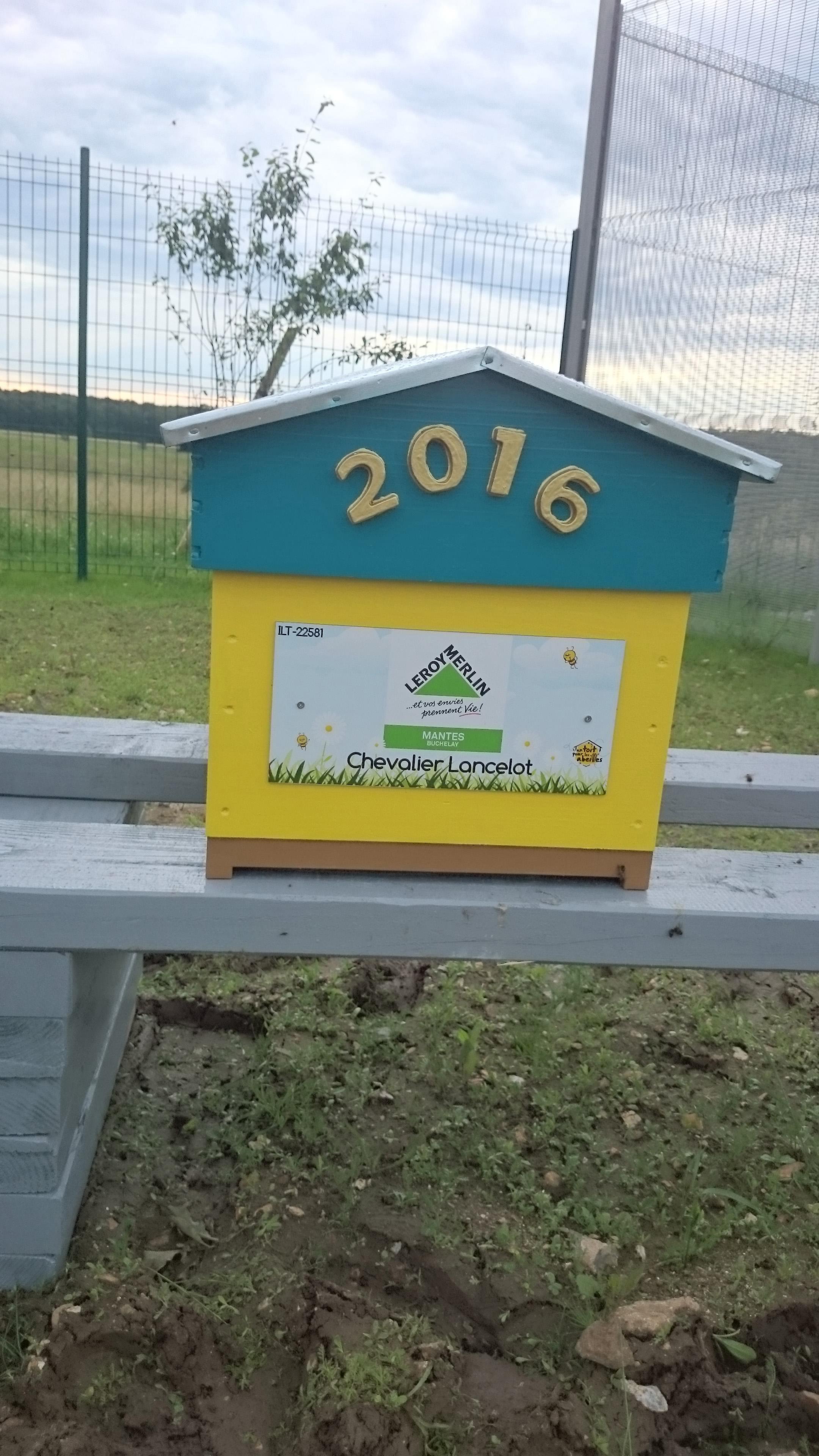 Un blog pour les abeilles dsc 0311 - Leroy merlin mantes ...